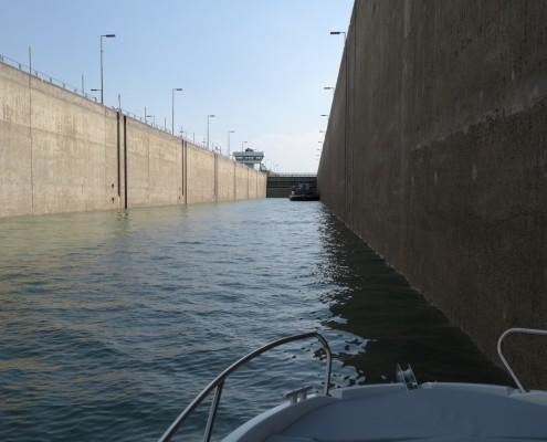 Revierfahrt auf dem Rhein